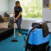professional carpet cleaning 2002cs