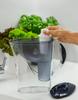Dafi Standard Water Pitcher Filter