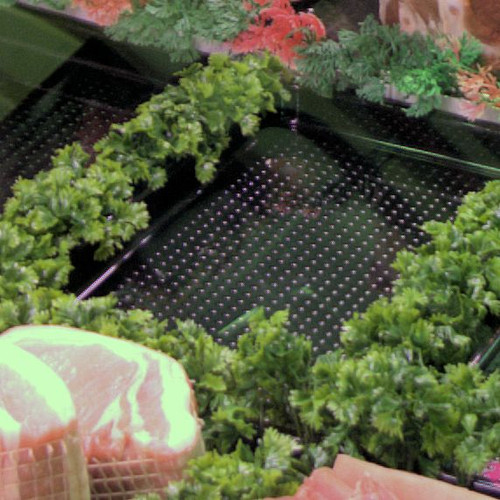 Parsley Garnish 280mm (Pack of 12) min 4 packs of 12