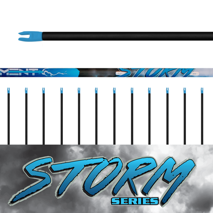 (12) Unfletched Storm Arrows