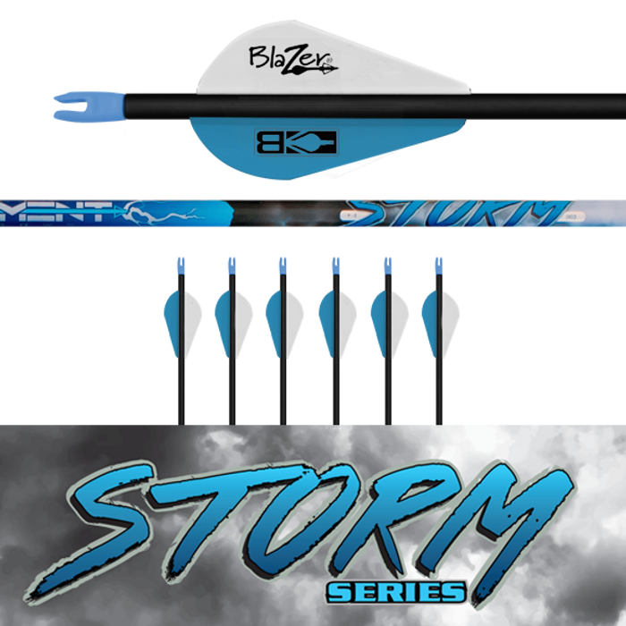 (6) Fletched Storm Arrows
