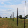 8' Steel Deer Fence Post