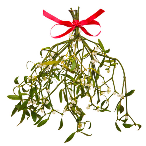 """Wondrous Wicks"" Merry Mistletoe -  4 OZ - Burns 20-25 Hours!"