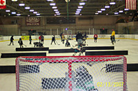 SRG Block Rink Dividers