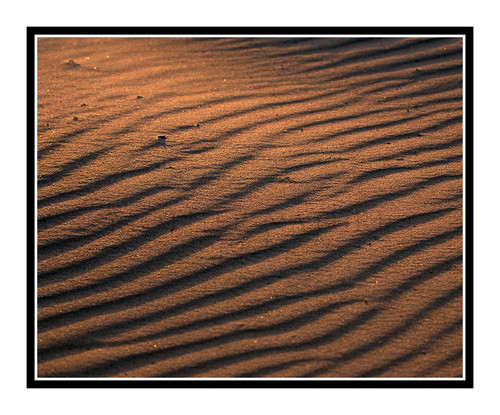 Sand Dunes Detail at the Great Sand Dunes National Park, Colorado 1241