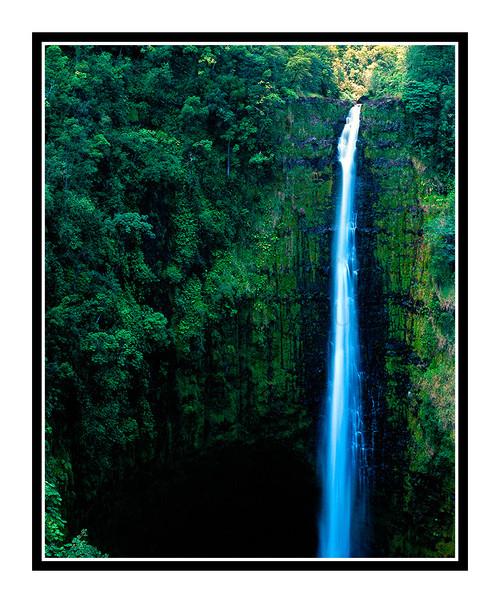 Akaka Falls Waterfall on the Big Island, Hawaii 184