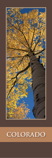 COLORADO Bookmark - Mueller State Park 2507 Front