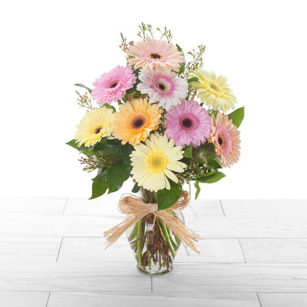 Cheery Gerbera | bright, pastel or warm