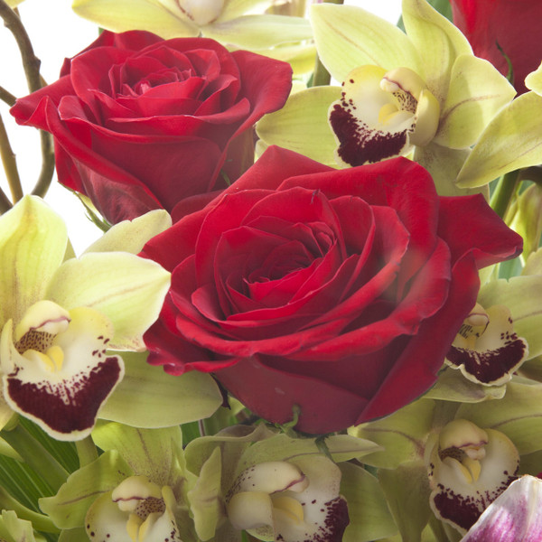 Orchid+ Roses  | Red