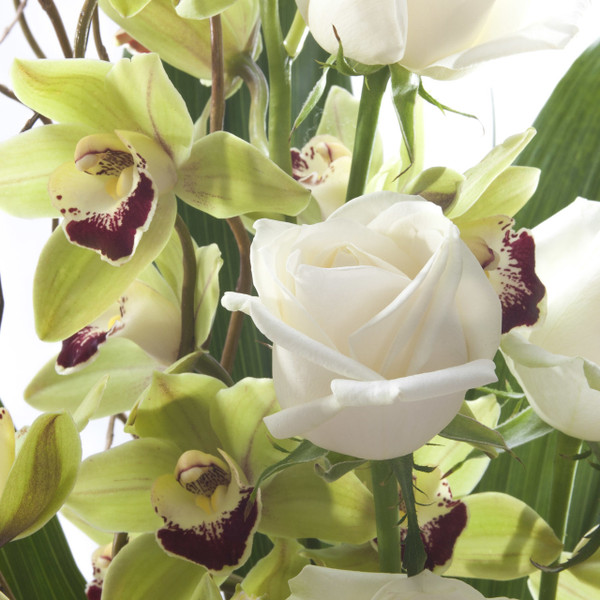 Orchid+ Roses  | White