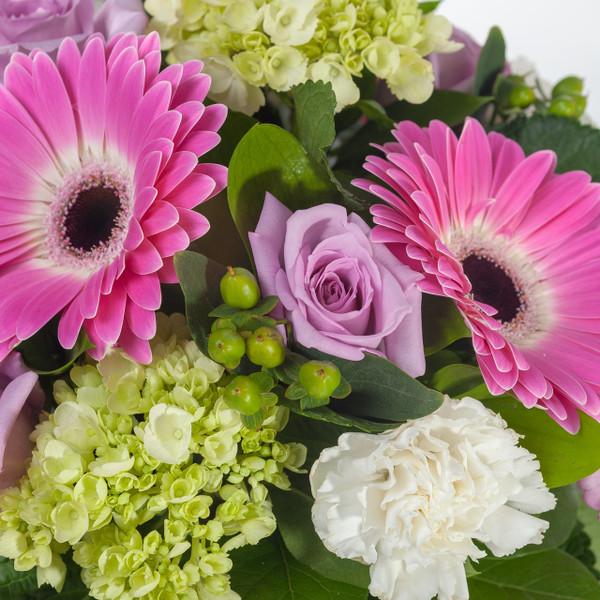 Enchanted Roses - Lavender