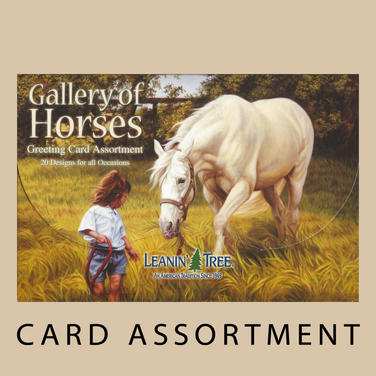Gallery of horses greeting card assortment horse play gallery of horses 20 card assortment by leanin tree square m4hsunfo