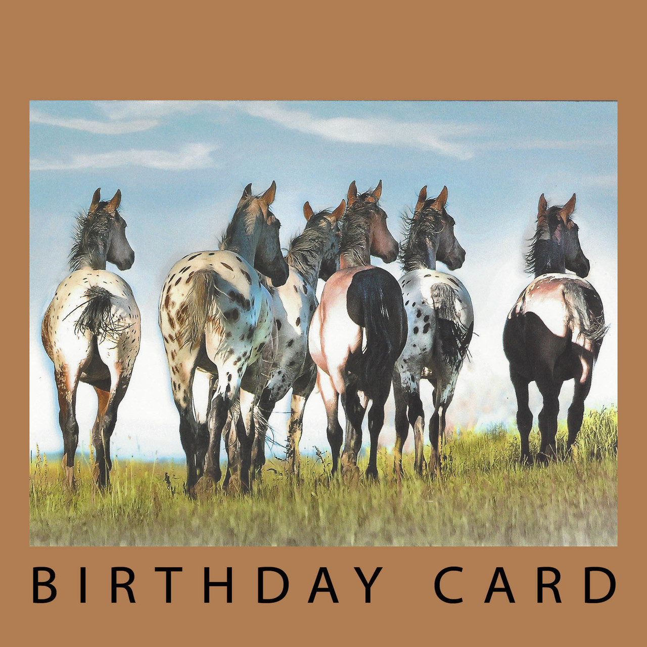 Another year behind you birthday card horse play another year behind you birthday card by leanin tree square bookmarktalkfo Images