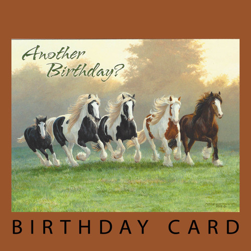 Horses horse cards everyday cards page 1 horse play birthday card by leanin tree square bookmarktalkfo Images