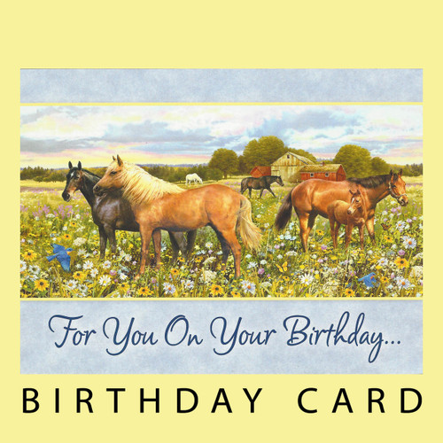For You On Your Birthday Card Horse Play