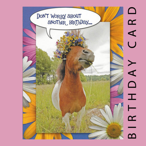 Dont Worry About Another Birthday Birthday Card Horse Play