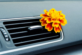 Car Air Fresheners Guaranteed to Make your Car Interior Smell New
