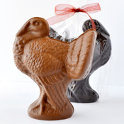 Chocolate Turkey XL