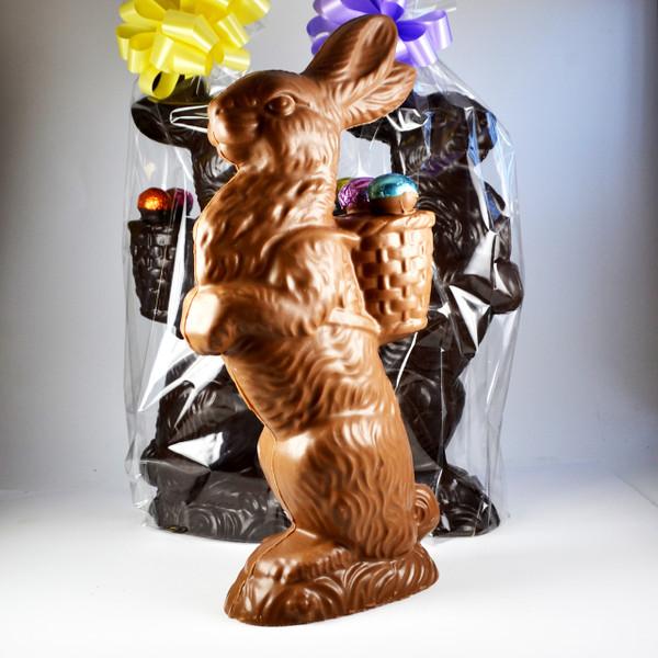 Large Proud Chocolate Bunny