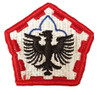 Military Issue Class A  555th Engineer Group Patch