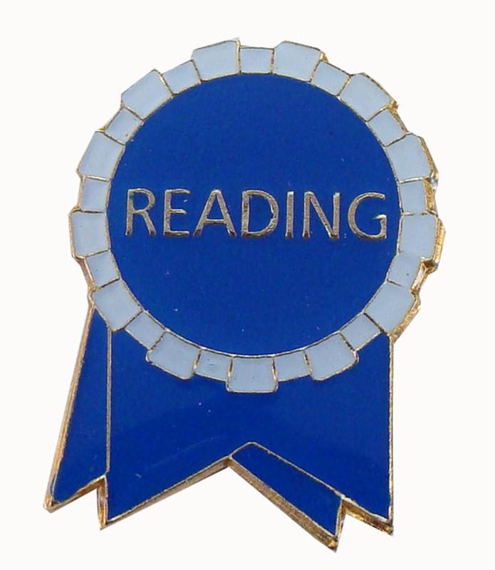 Reading Ribbon (blue/white) Lapel Pin