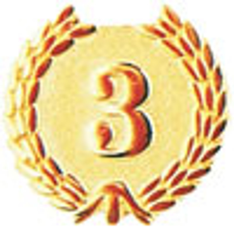 YEARS OF SERVICE (3) LAPEL PIN