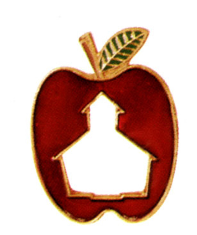 Schoolhouse cut-out in Apple Lapel Pin