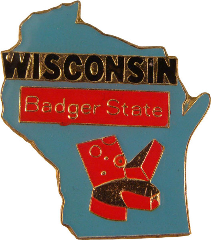 Wisconsin State Lapel Pin