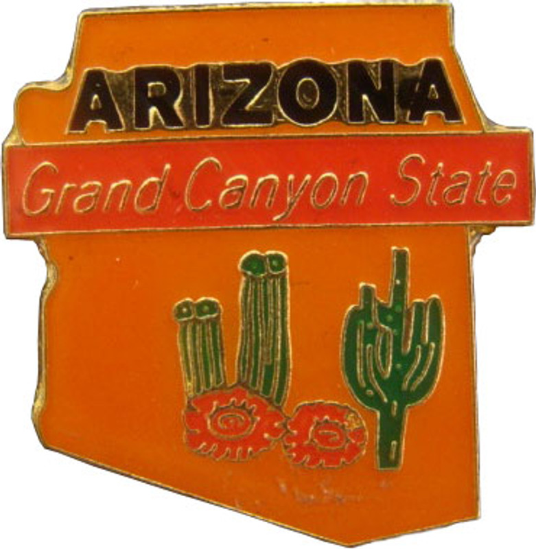 Arizona State Lapel Pin
