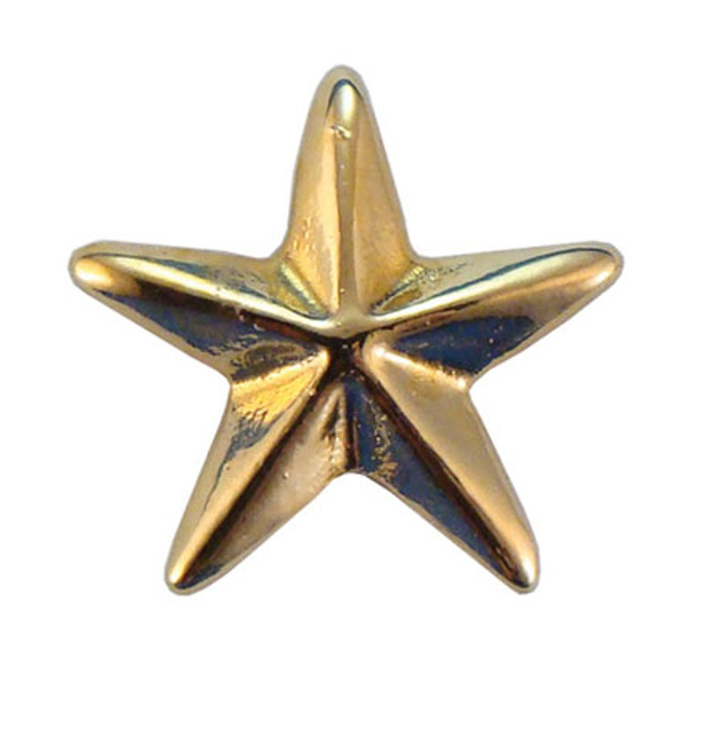 Gold Star (3-D) Lapel Pin