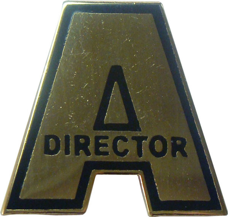 A Director in Gold Lapel Pin