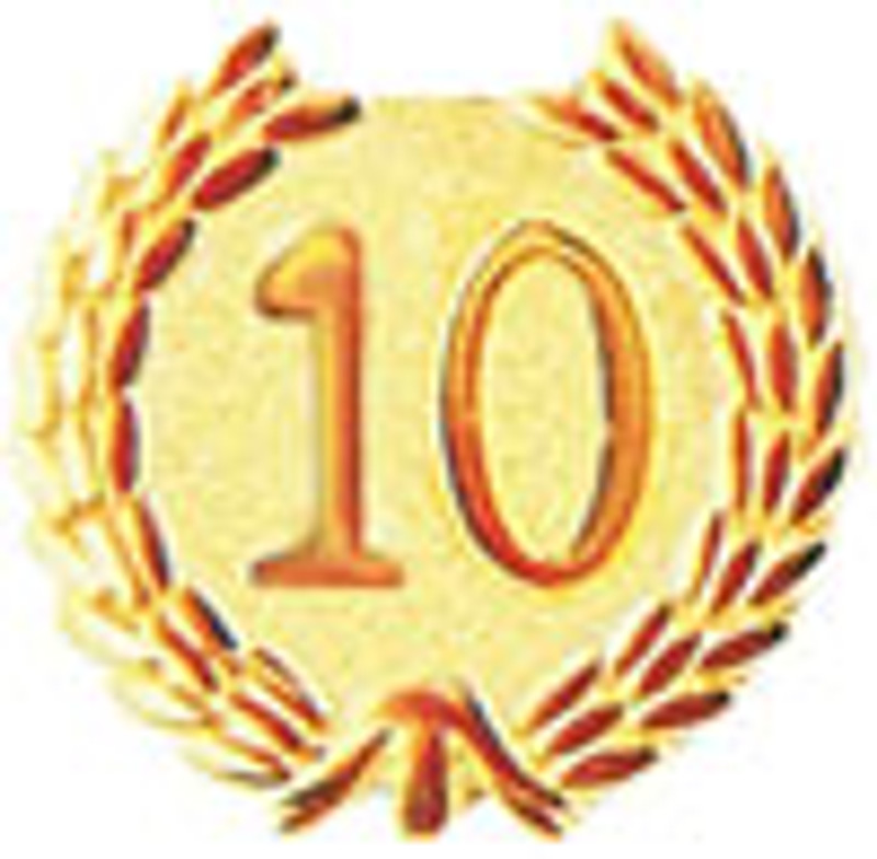 YEARS OF SERVICE 10 LAPEL PIN