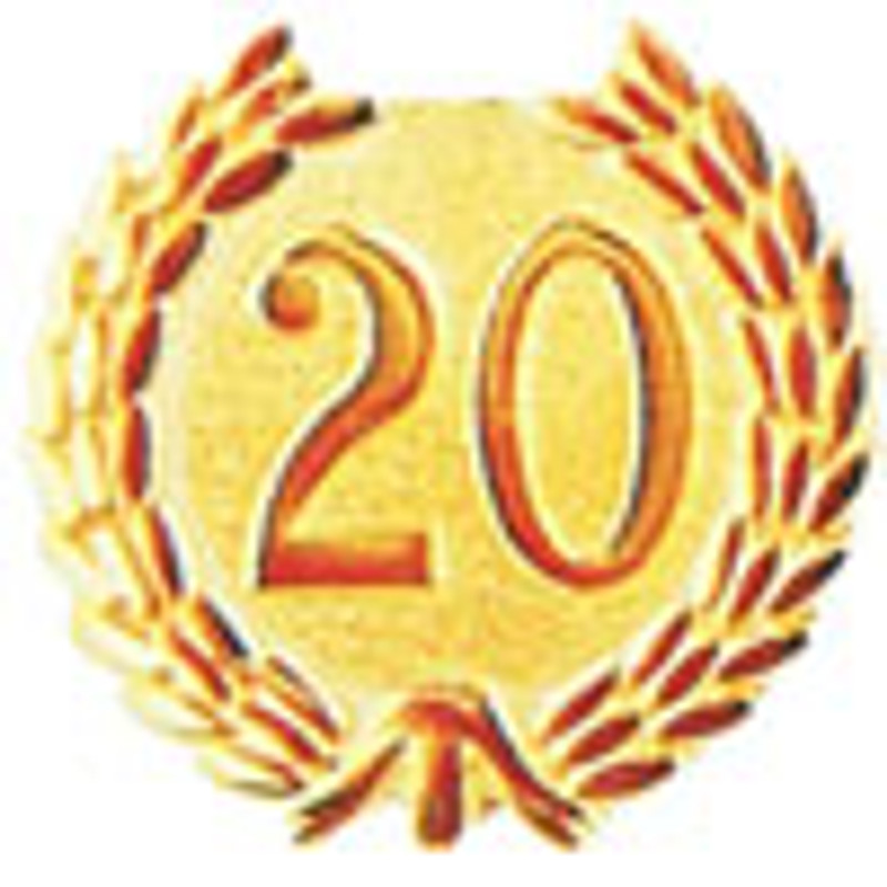 YEARS OF SERVICE 20 LAPEL PIN