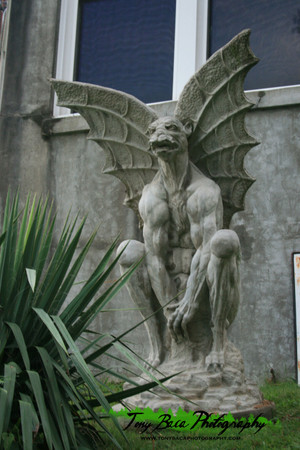 Gargoyle - A Tony Baca Original Photo -- Free Shipping!