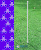 15mm pipe stake in use as a dog agility weave pole