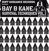 "Bay B Kane - Survival Techniques Volume 1 - White House Records 2 x 12"" Vinyl"