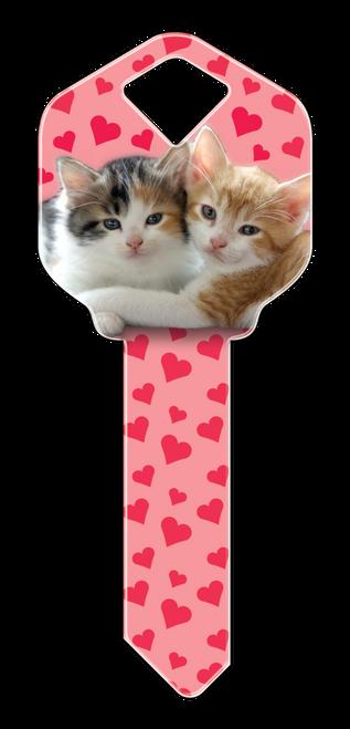 HK29- Kittens