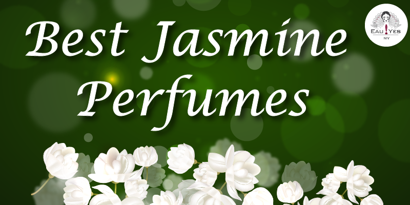 Best Jasmine Perfumes for Spring & Summer