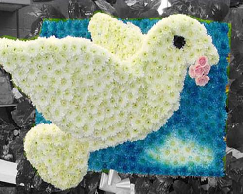 The Floral Dove-FNDOV-01