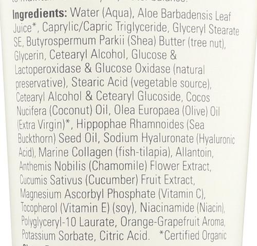 Vitamin C and Sea Buckthorn Lotion - 8 fl. oz.