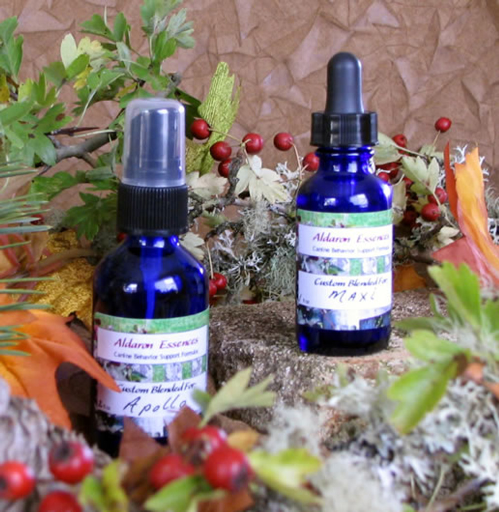 Create your own flower essence combination for your dog! Choose from English (Bach) and North American flower essences.