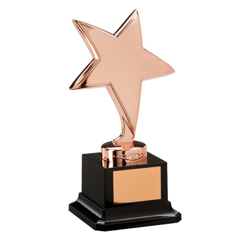 Challenger Bronze star Achievement Trophy Award