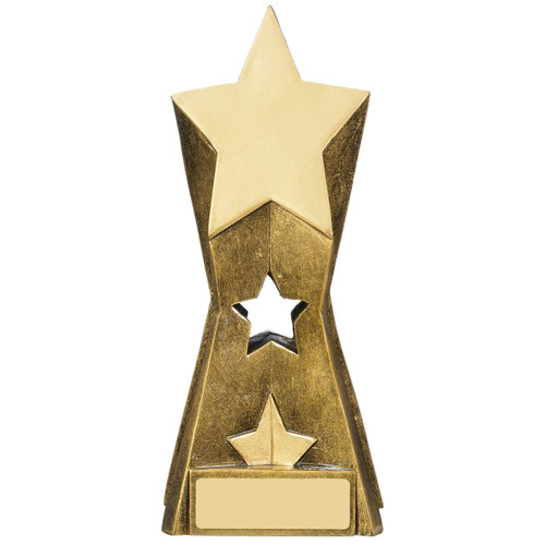 Gold Star Achievement Trophy for progress academic or sporting success