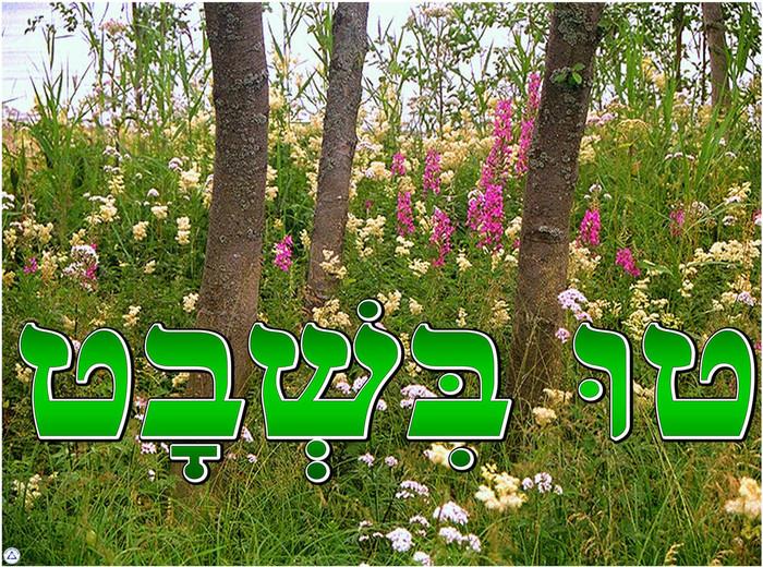 Tu BiSh'vat Poster
