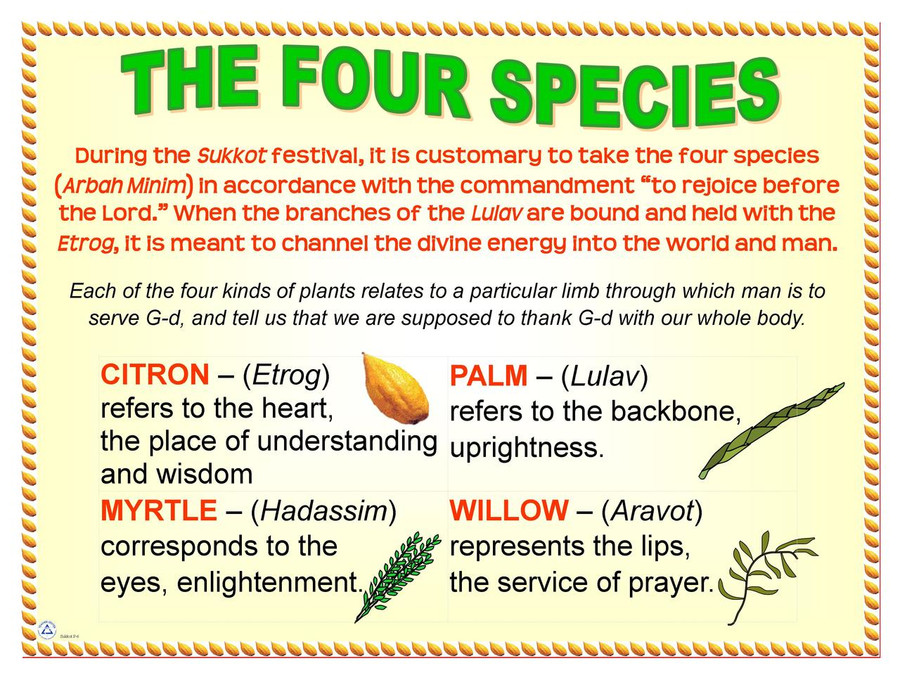 Four Species Poster