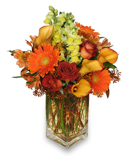 Autumn Adventure Arrangement