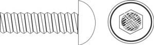Stainless Steel Buttonhead Allen, 10-32