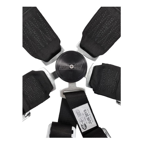 6-Point Individual Shoulder Restraint with Kam Lock