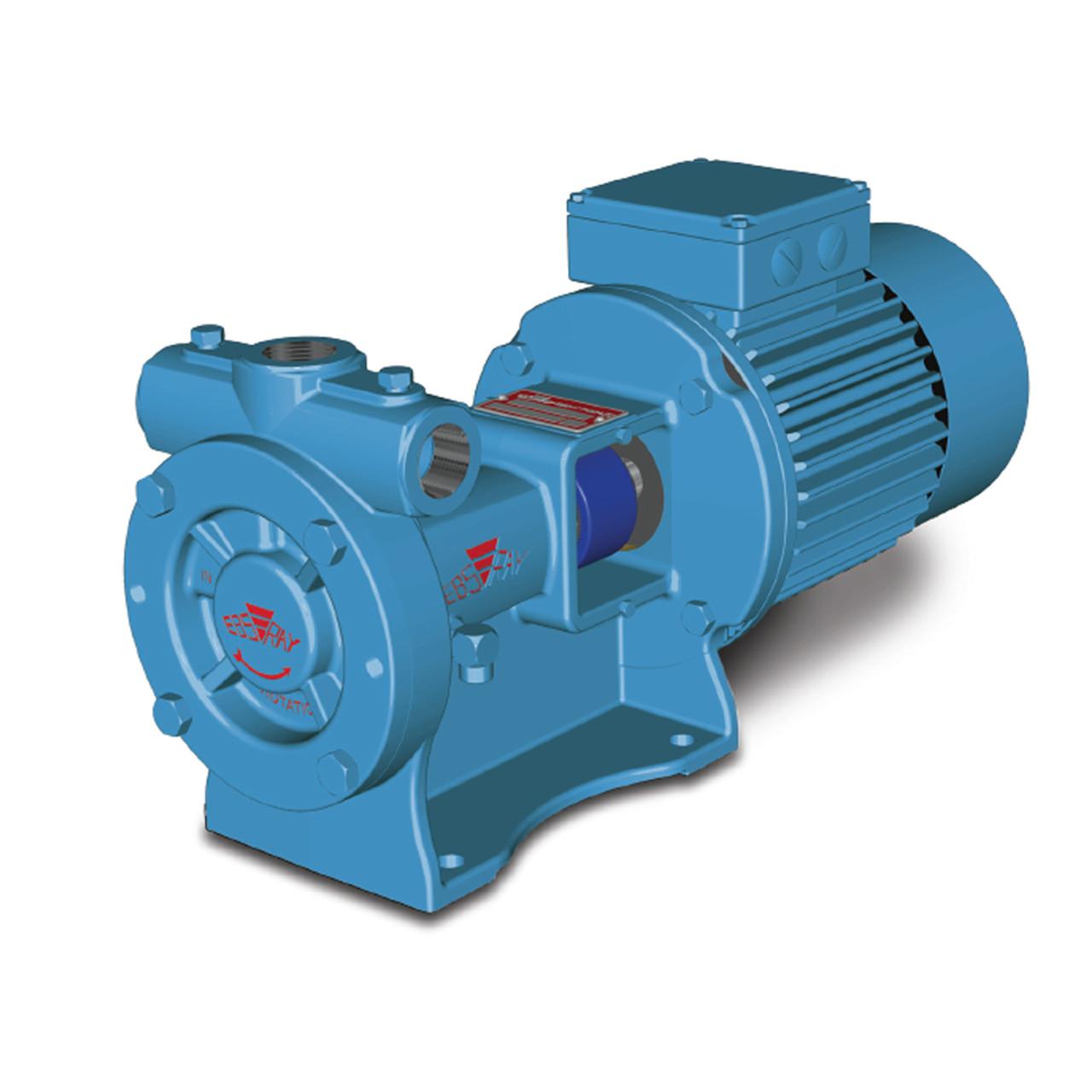 Blackmer Ebsray RC20 and RC25 - Regenerative Turbine Pump for LPG