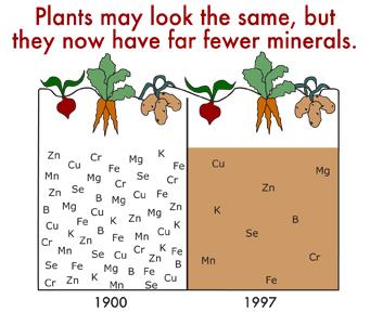 minerals-missing.jpg